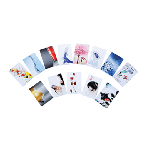 Credit Card Promotional Power Bank