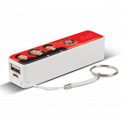 All Power Banks Great for Promotional Products